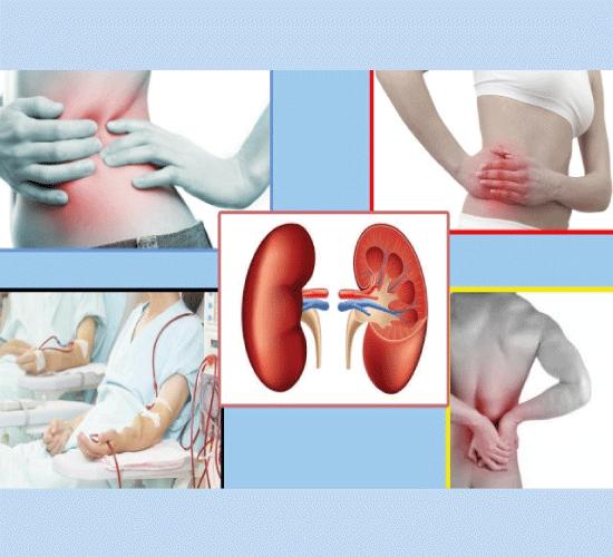 Mengenal Gejala Awal Penyakit Ginjal