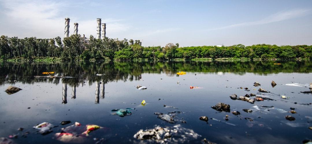 Mengapa Kemasan Kertas Lebih unggul dari Plastik
